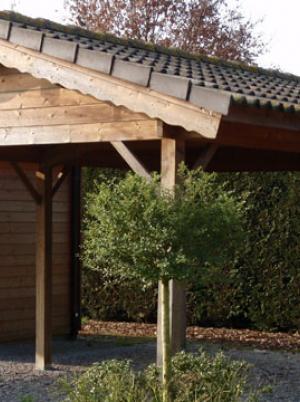 Carport in hout met zadeldak